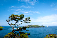 Cape Flattery View